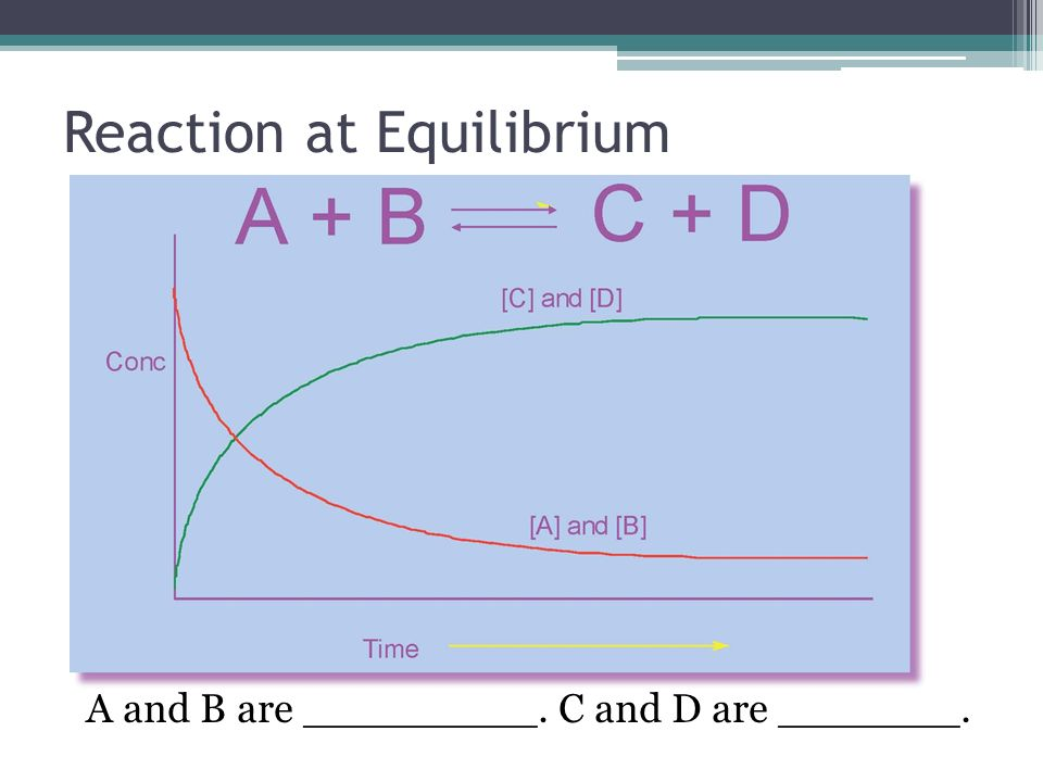 Reaction at Equilibrium