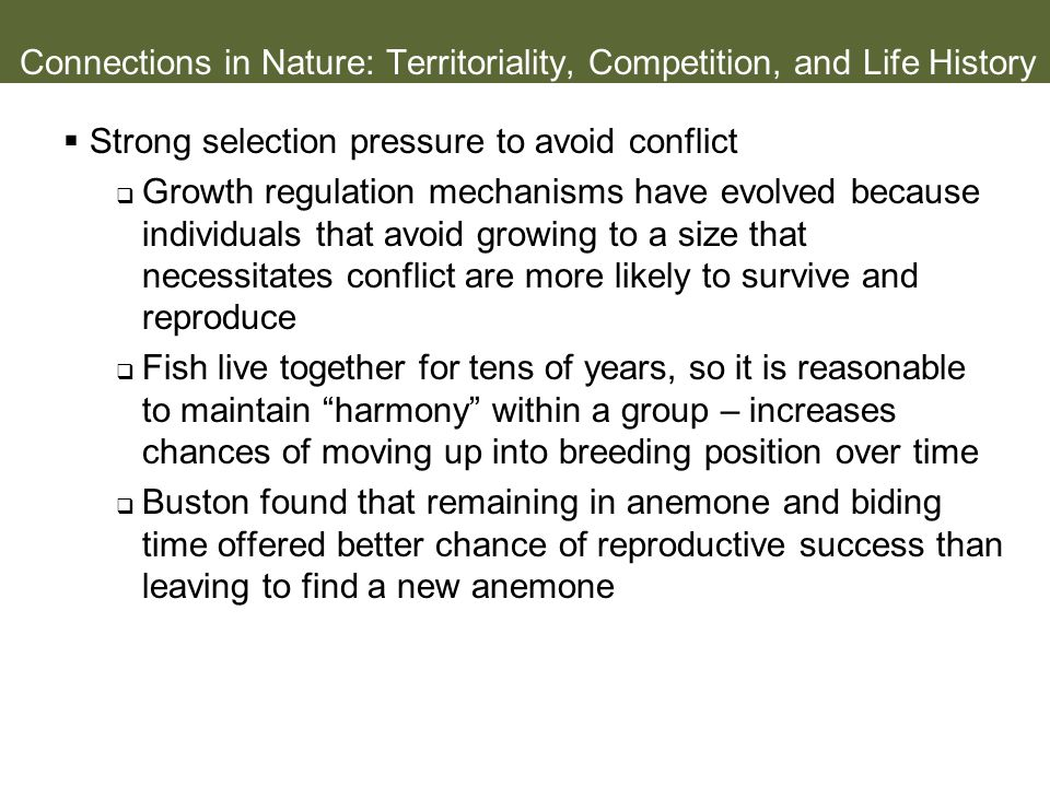 Connections in Nature: Territoriality, Competition, and Life History
