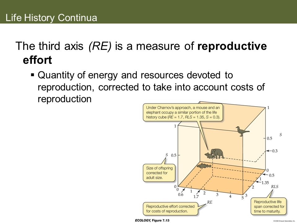 The third axis (RE) is a measure of reproductive effort