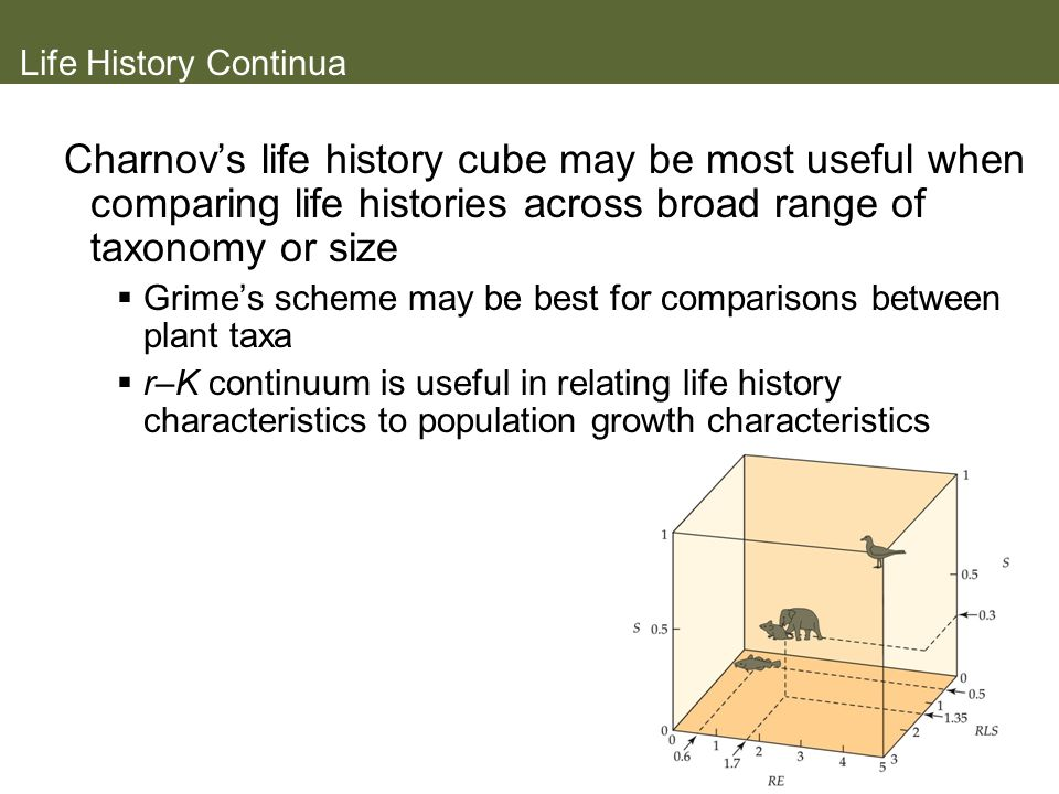Life History Continua Charnov's life history cube may be most useful when comparing life histories across broad range of taxonomy or size.