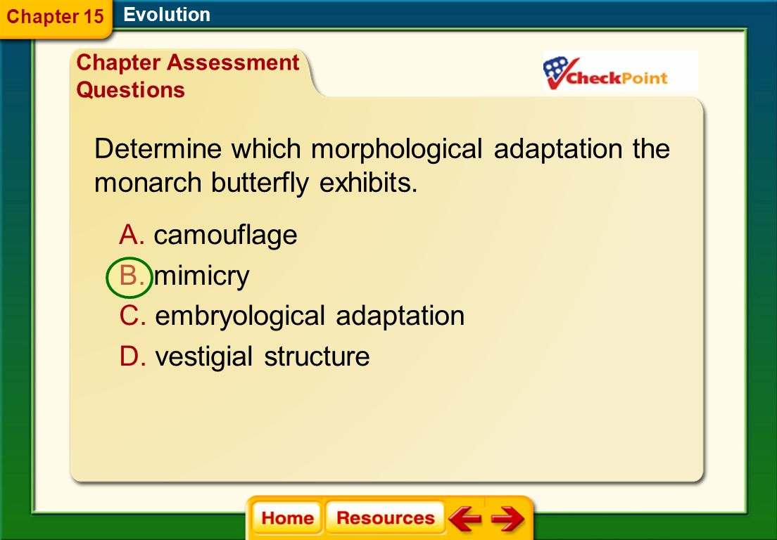 Determine which morphological adaptation the
