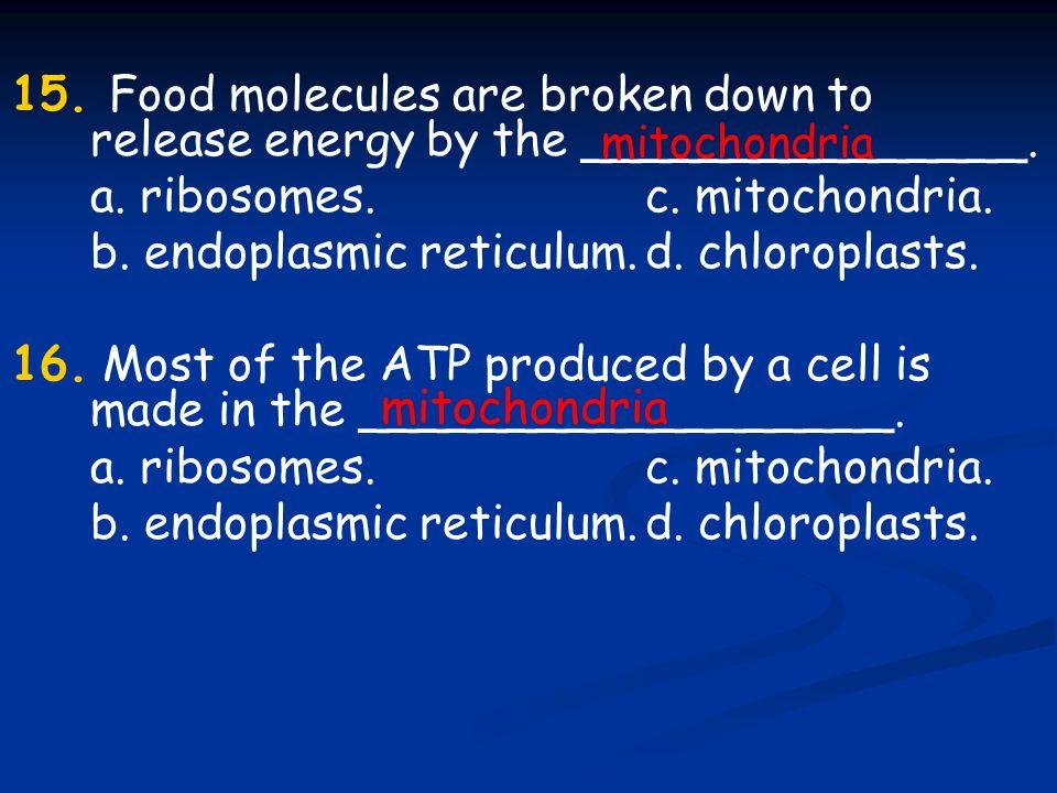 a. ribosomes. c. mitochondria.
