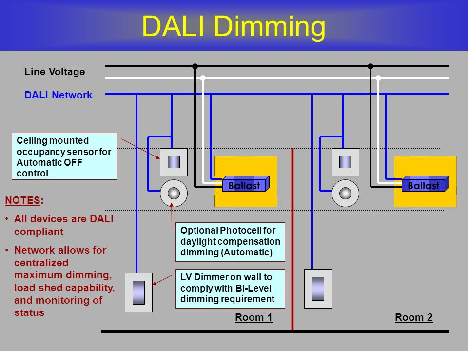 DALI Dimming Line Voltage DALI Network Ballast Ballast NOTES: