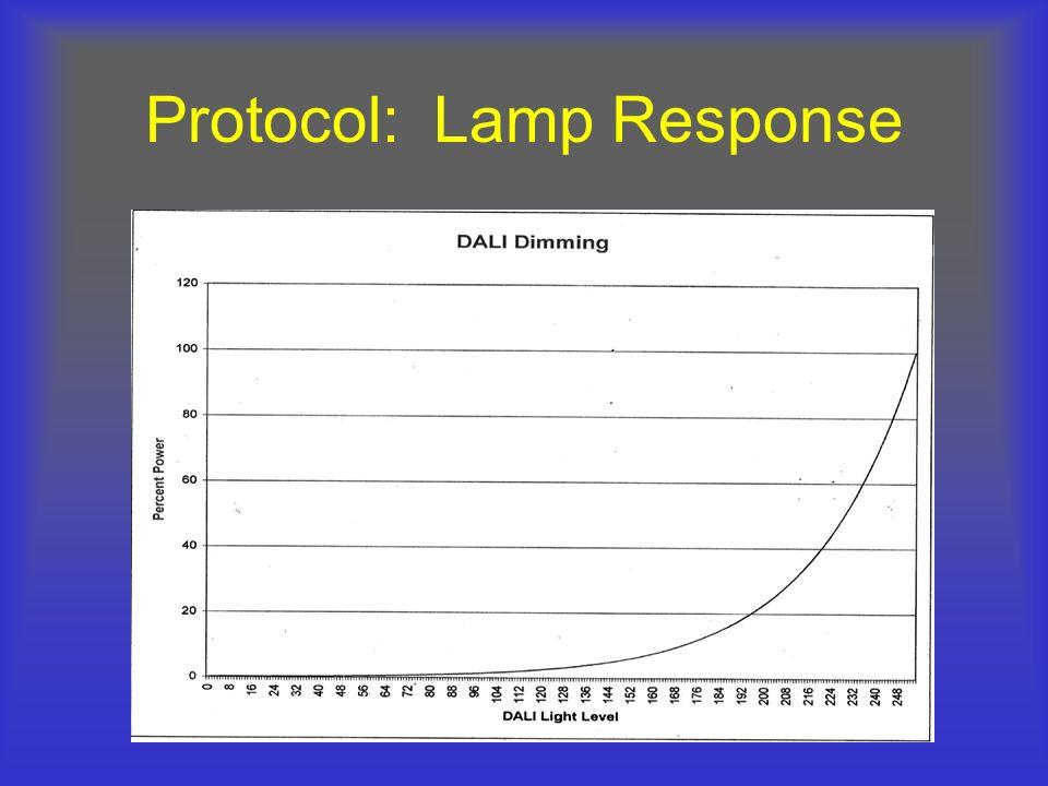 Protocol: Lamp Response