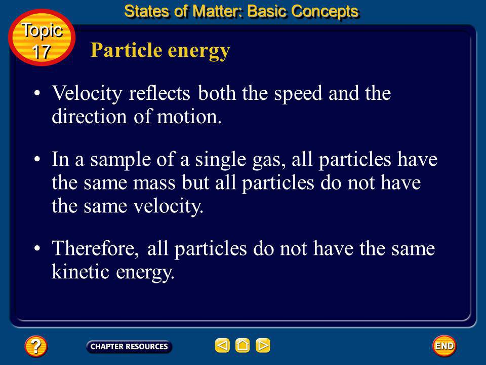 Velocity reflects both the speed and the direction of motion.
