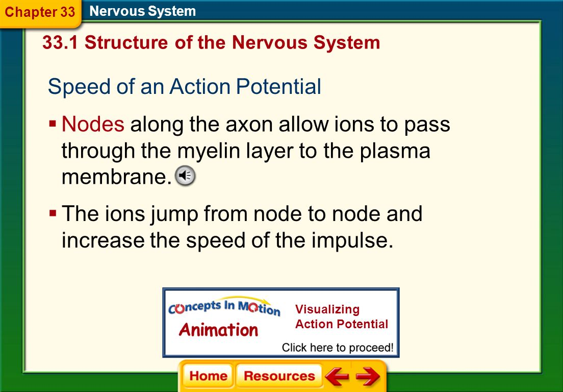 Speed of an Action Potential
