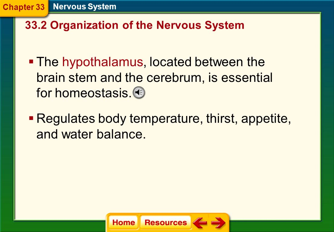 Regulates body temperature, thirst, appetite, and water balance.