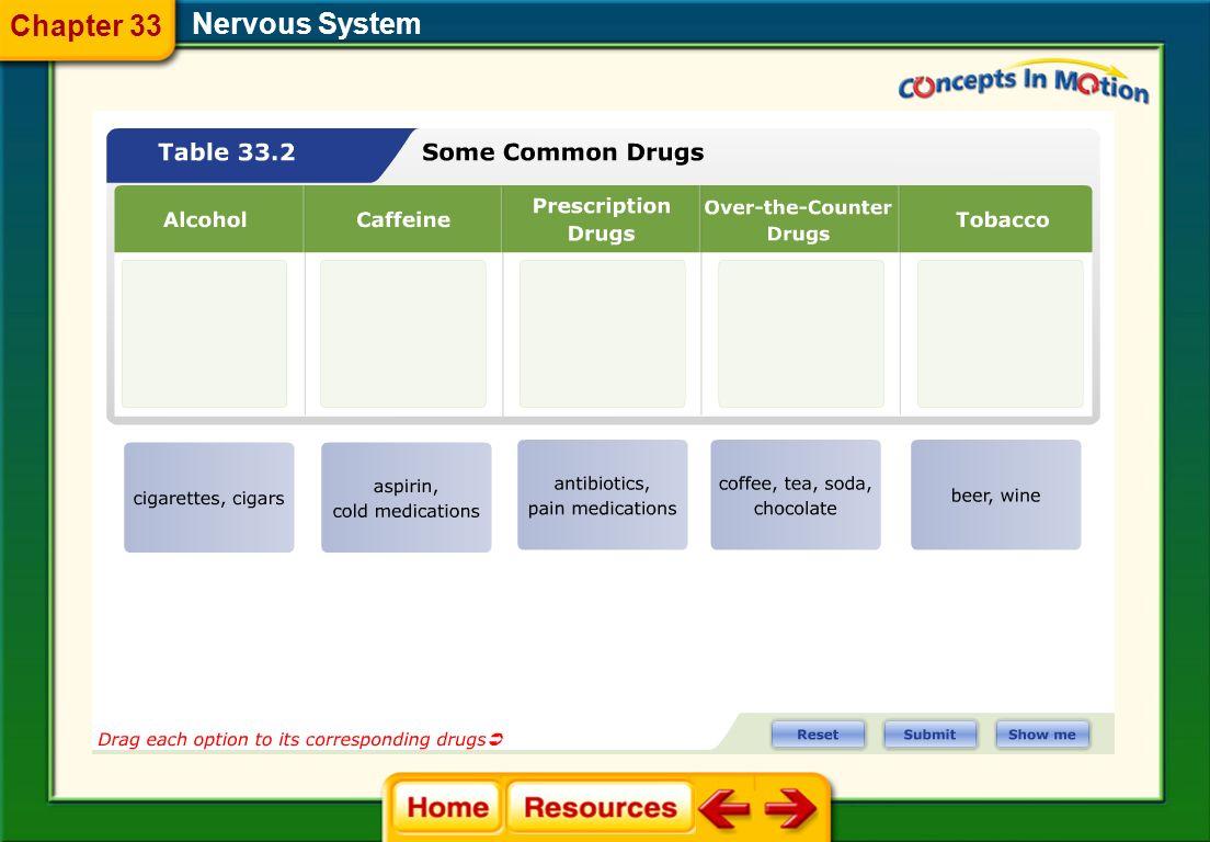 Chapter 33 Nervous System