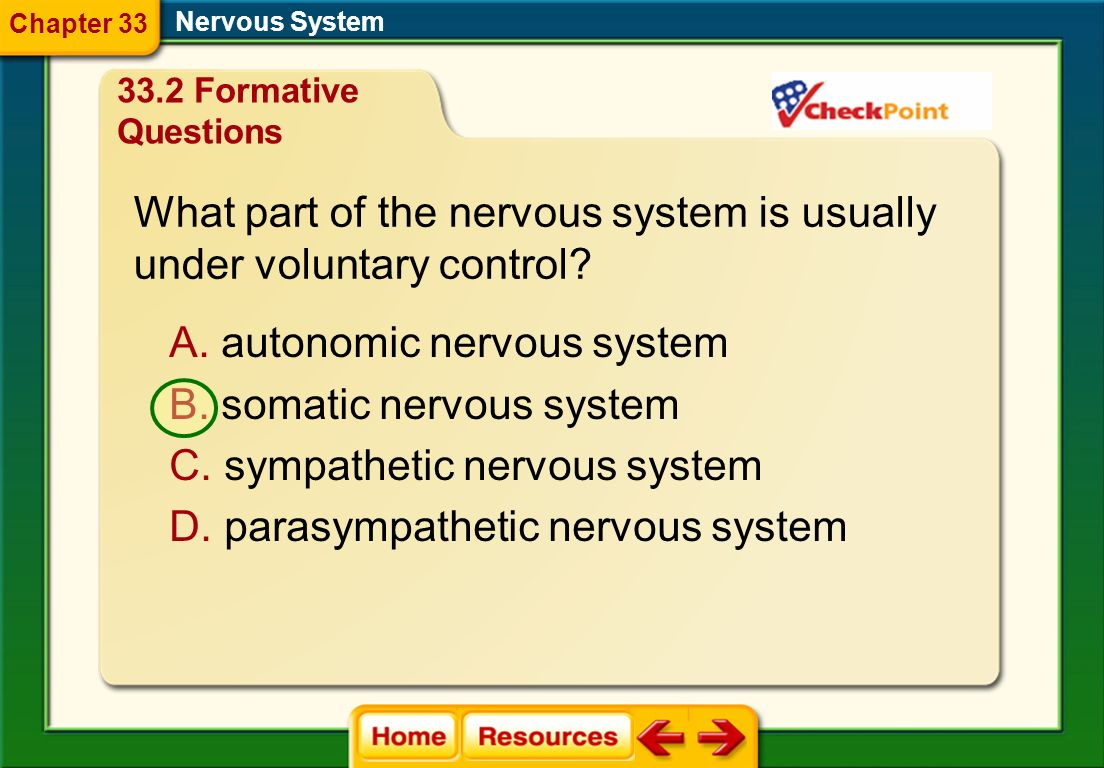 nervous and endocrine system study guide answers