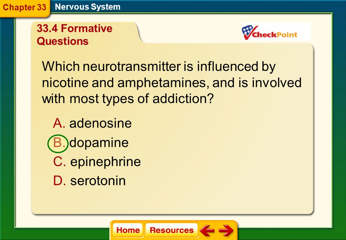 Which neurotransmitter is influenced by