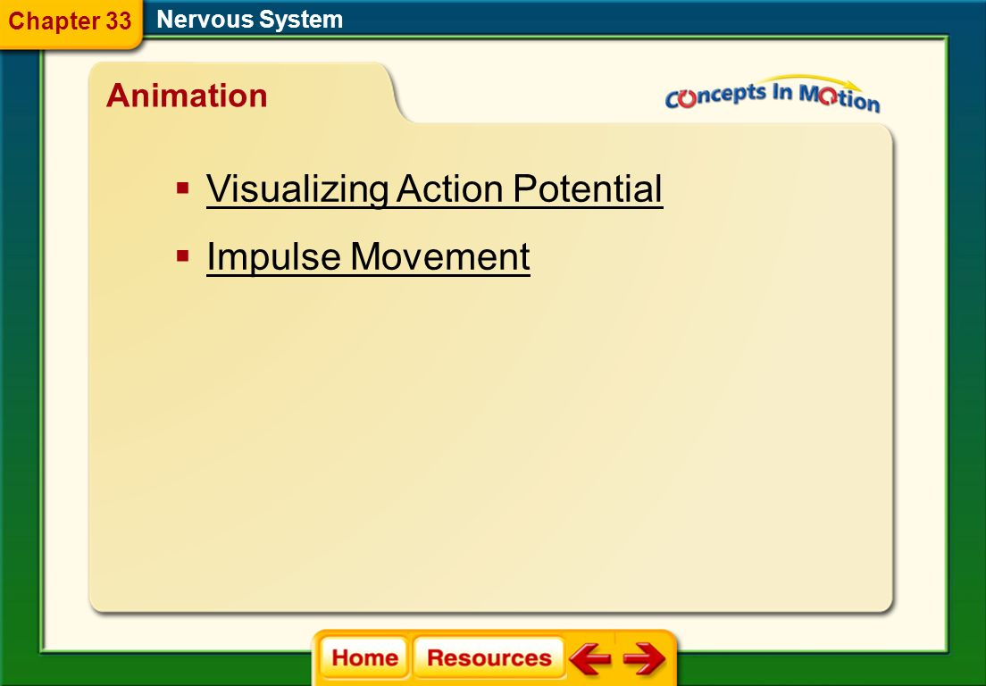 Visualizing Action Potential Impulse Movement