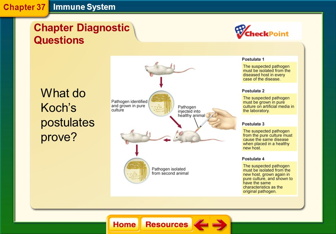 What do Koch's postulates prove Chapter Diagnostic Questions