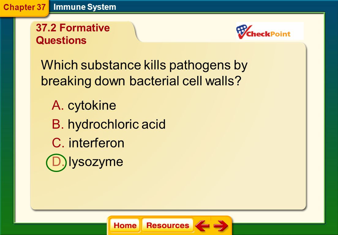 Which substance kills pathogens by breaking down bacterial cell walls