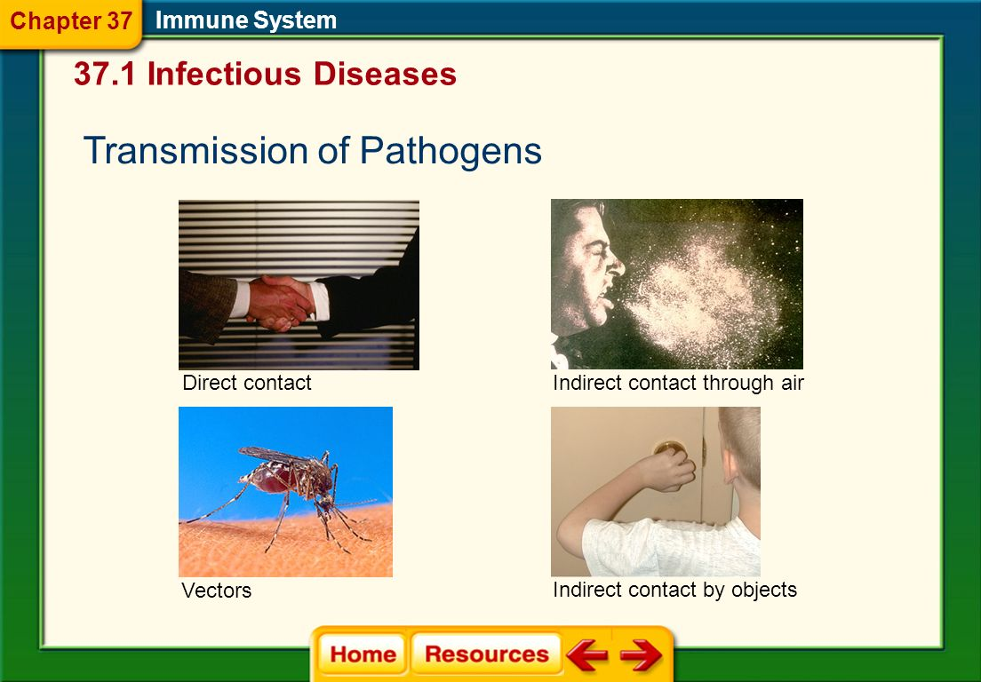 Transmission of Pathogens