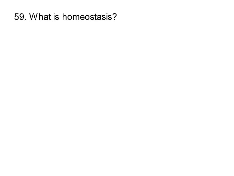 59. What is homeostasis