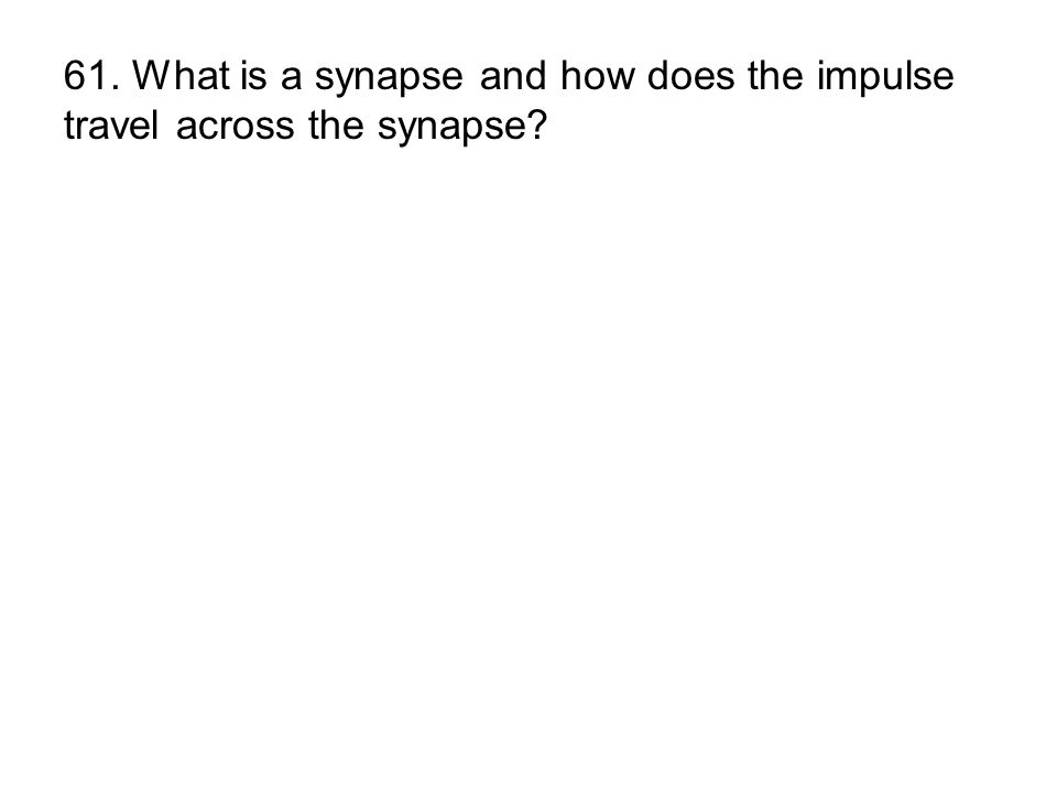 61. What is a synapse and how does the impulse travel across the synapse
