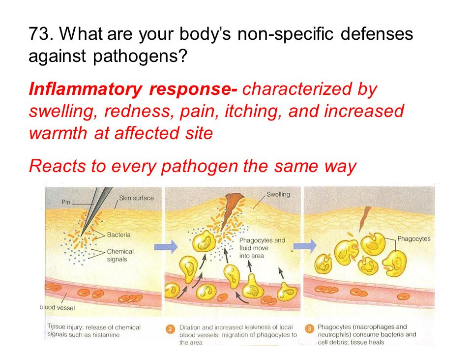 73. What are your body's non-specific defenses against pathogens