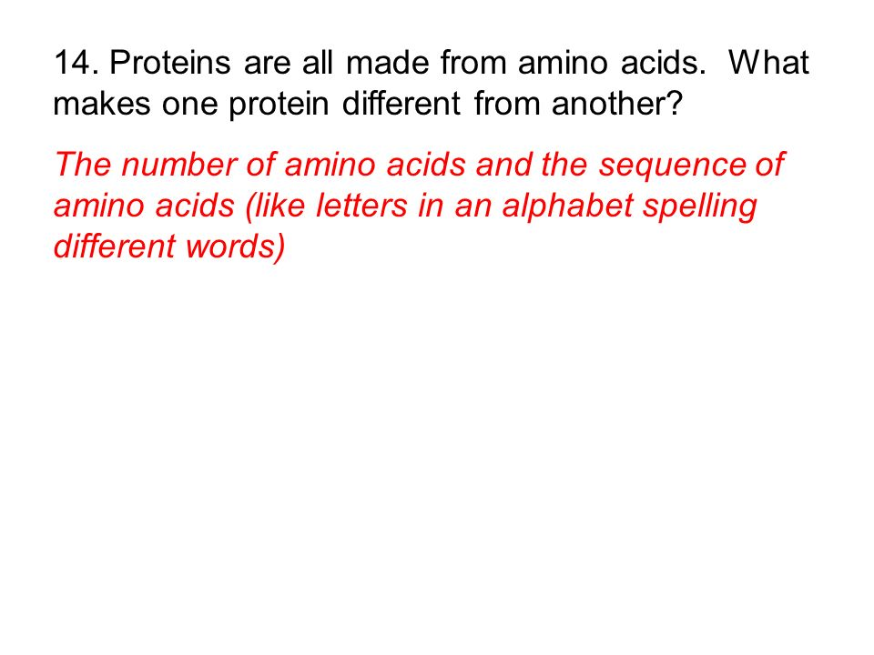 14. Proteins are all made from amino acids