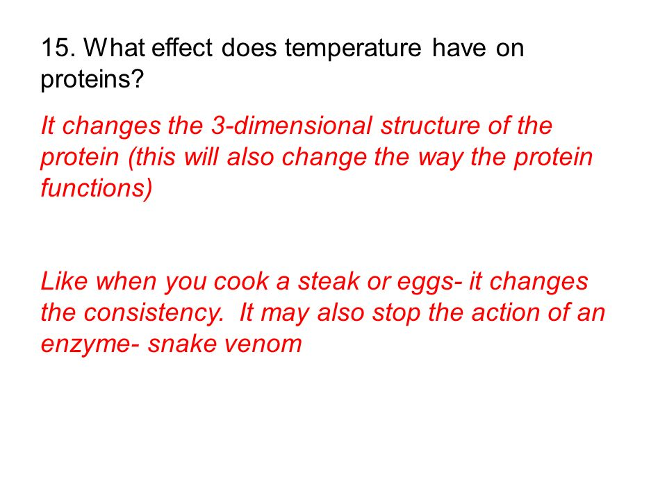 15. What effect does temperature have on proteins
