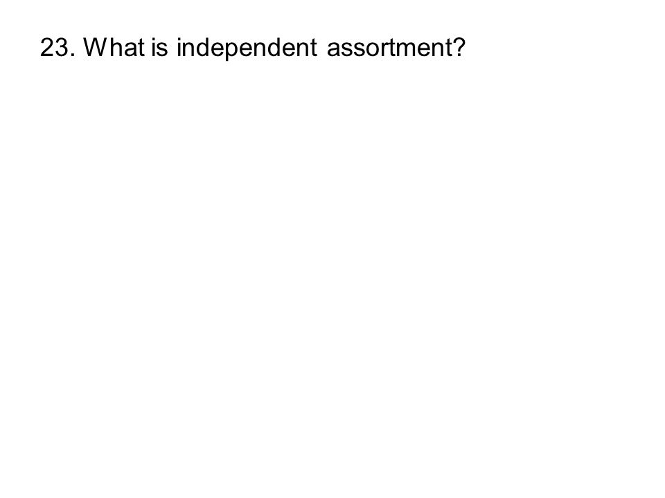 23. What is independent assortment