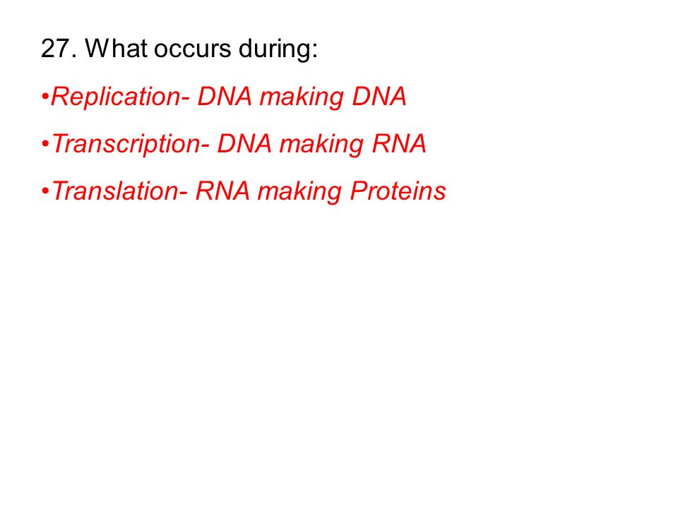 27. What occurs during: Replication- DNA making DNA.