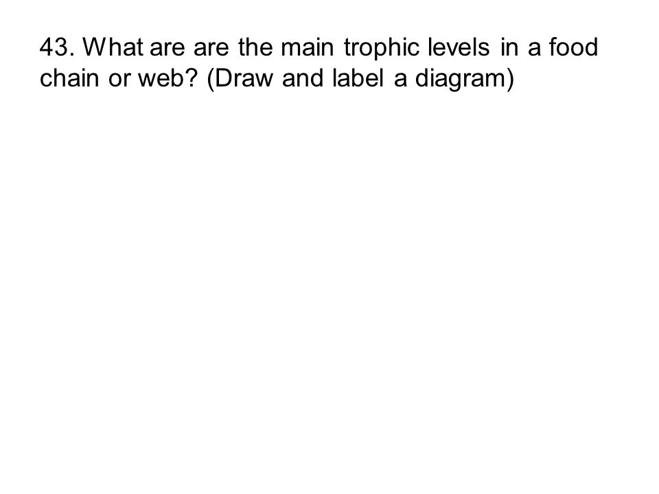 43. What are are the main trophic levels in a food chain or web