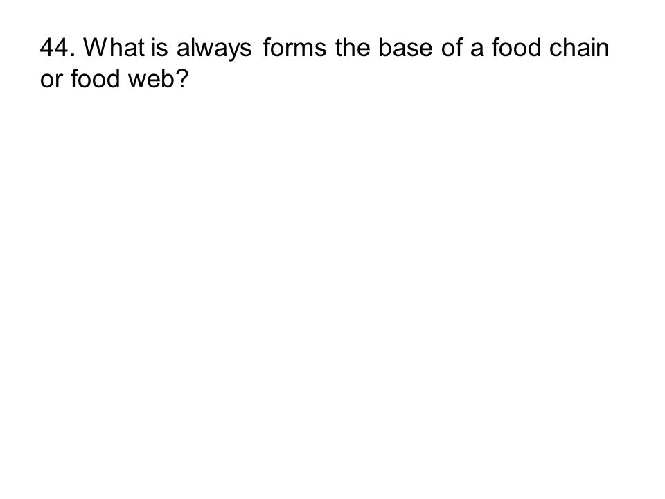 44. What is always forms the base of a food chain or food web