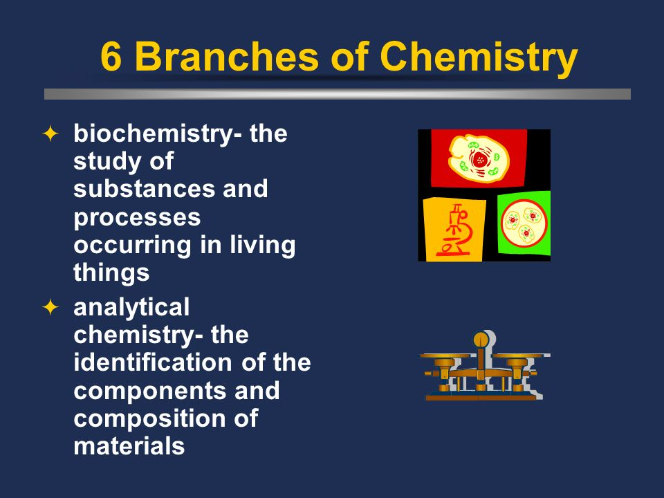6 Branches of Chemistry biochemistry- the study of substances and processes occurring in living things.