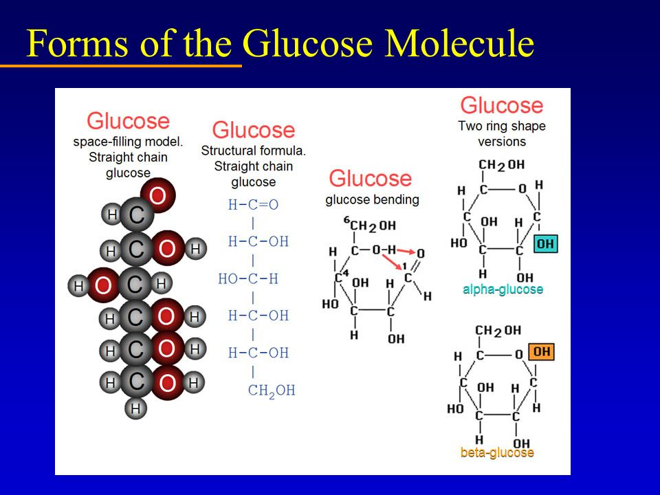 Forms of the Glucose Molecule