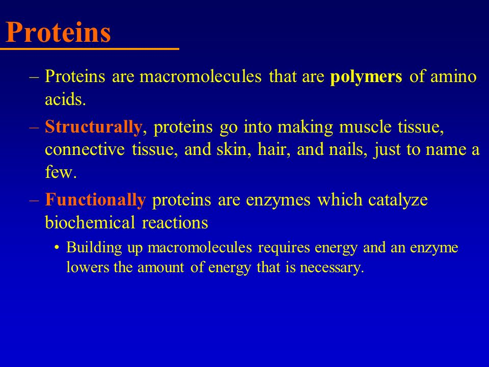 Proteins Proteins are macromolecules that are polymers of amino acids.