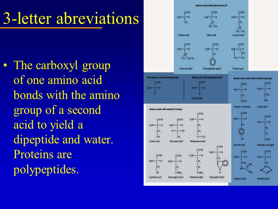 3-letter abreviations