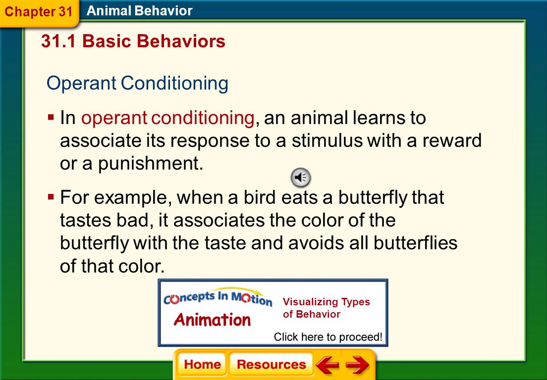 Chapter 31 Animal Behavior. 31.1 Basic Behaviors. Operant Conditioning.