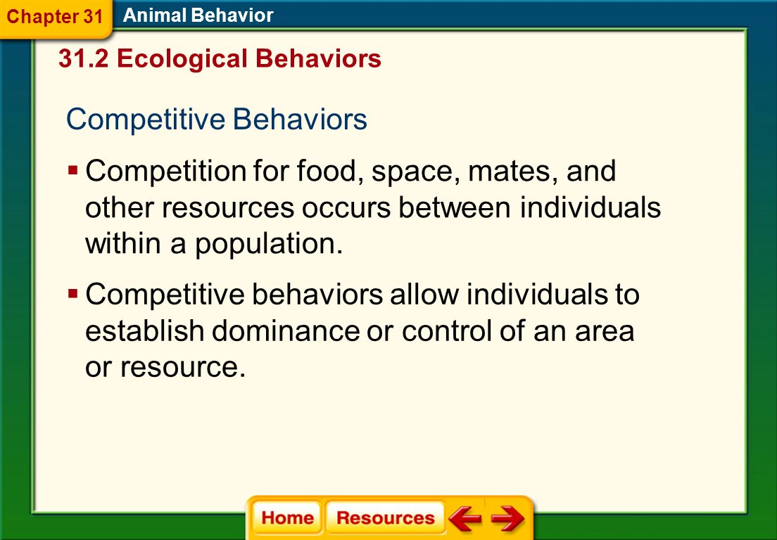 Competitive Behaviors