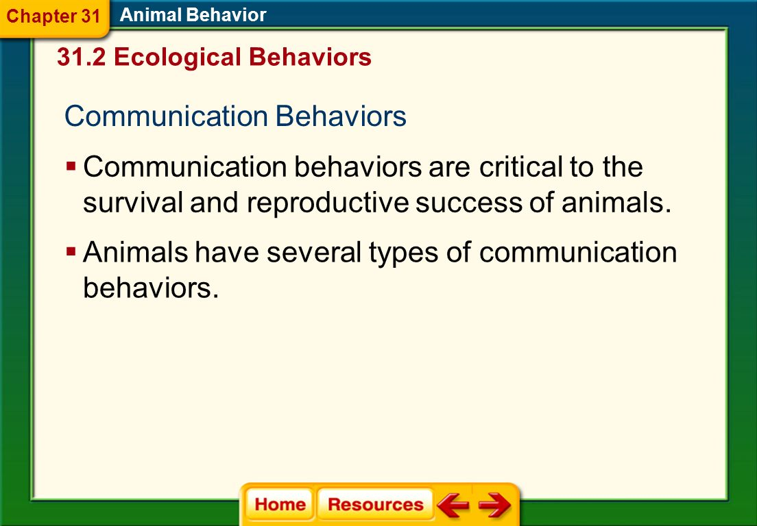 Communication Behaviors