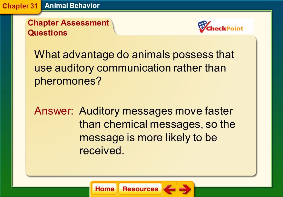 What advantage do animals possess that