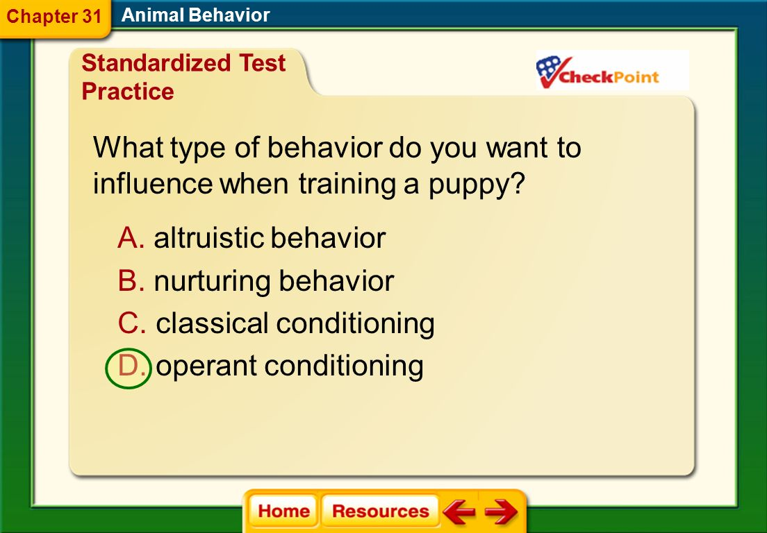 What type of behavior do you want to influence when training a puppy