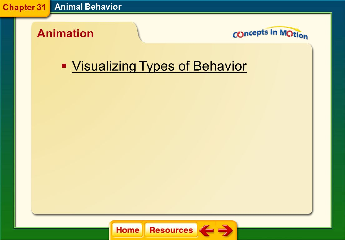 Visualizing Types of Behavior