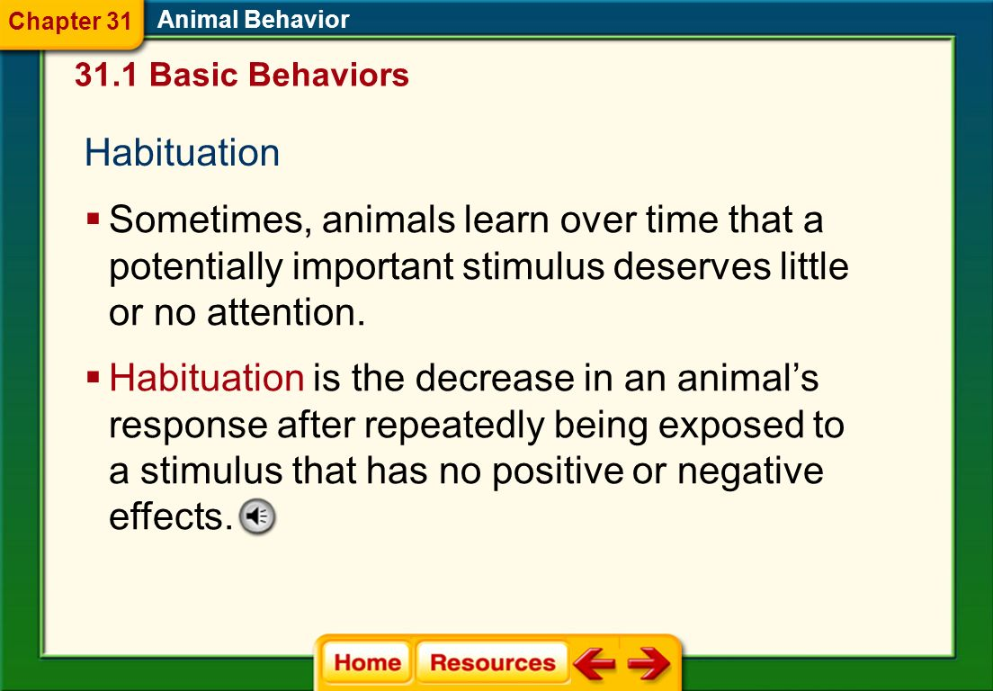 Chapter 31 Animal Behavior. 31.1 Basic Behaviors. Habituation.