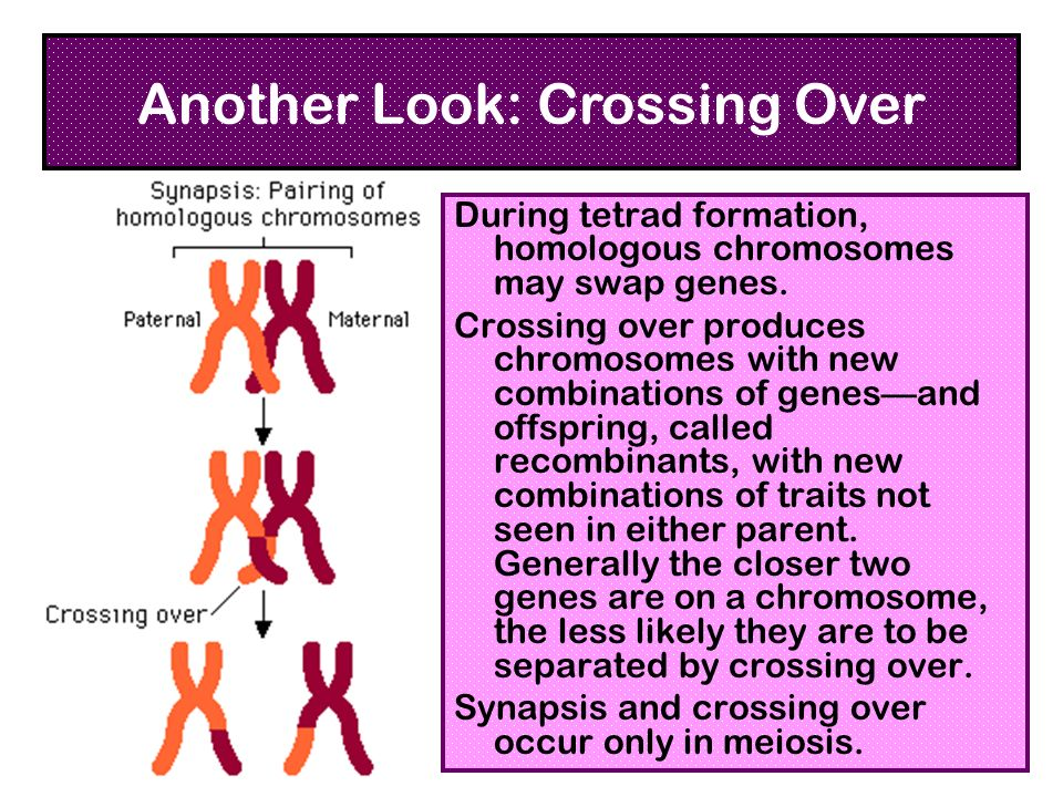 Another Look: Crossing Over