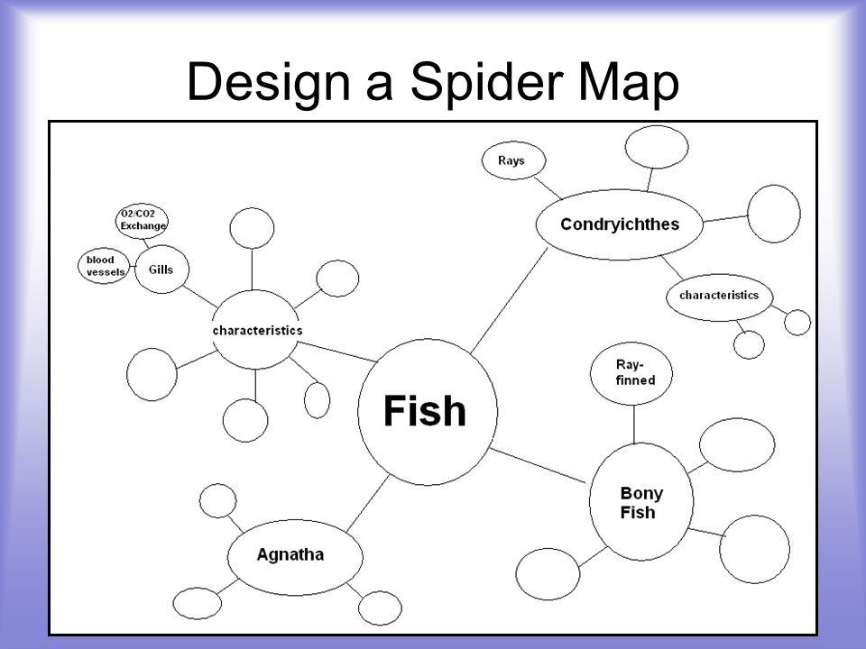 Design a Spider Map