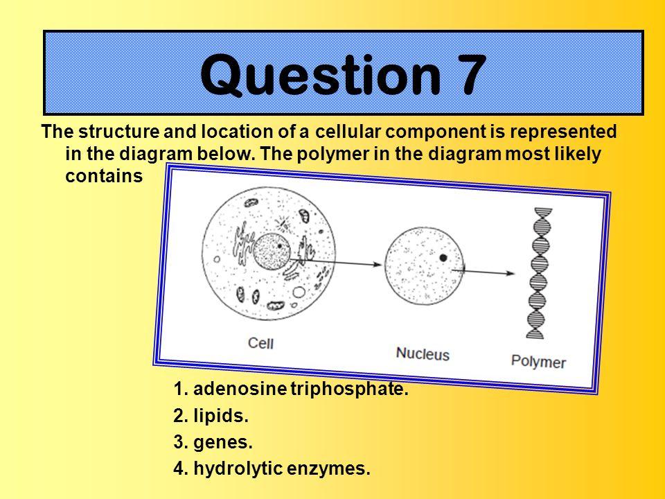 Question 3 Question 7.