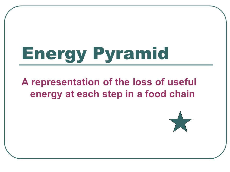 Energy Pyramid A representation of the loss of useful energy at each step in a food chain