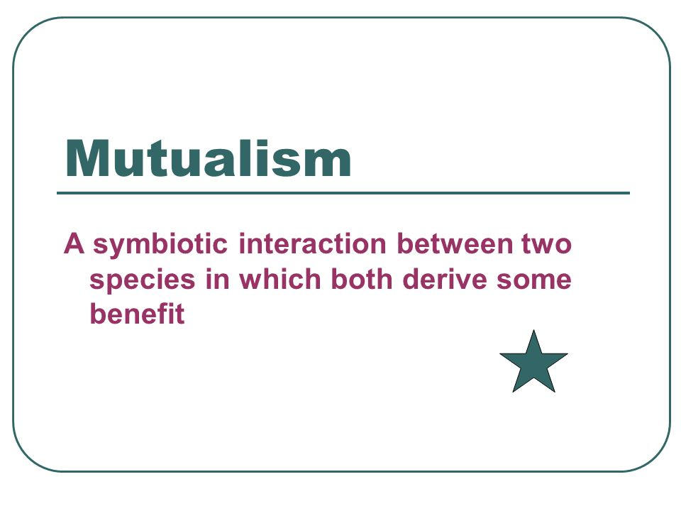 Mutualism A symbiotic interaction between two species in which both derive some benefit