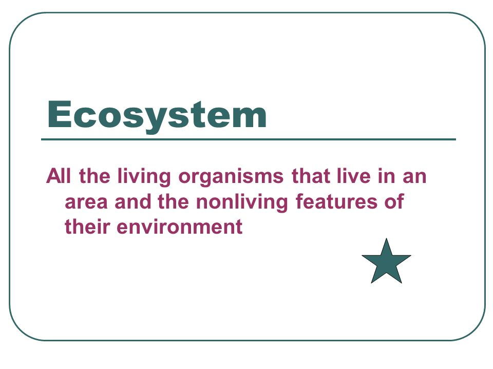 Ecosystem All the living organisms that live in an area and the nonliving features of their environment.