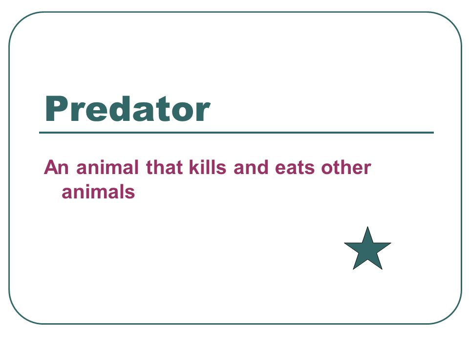 Predator An animal that kills and eats other animals