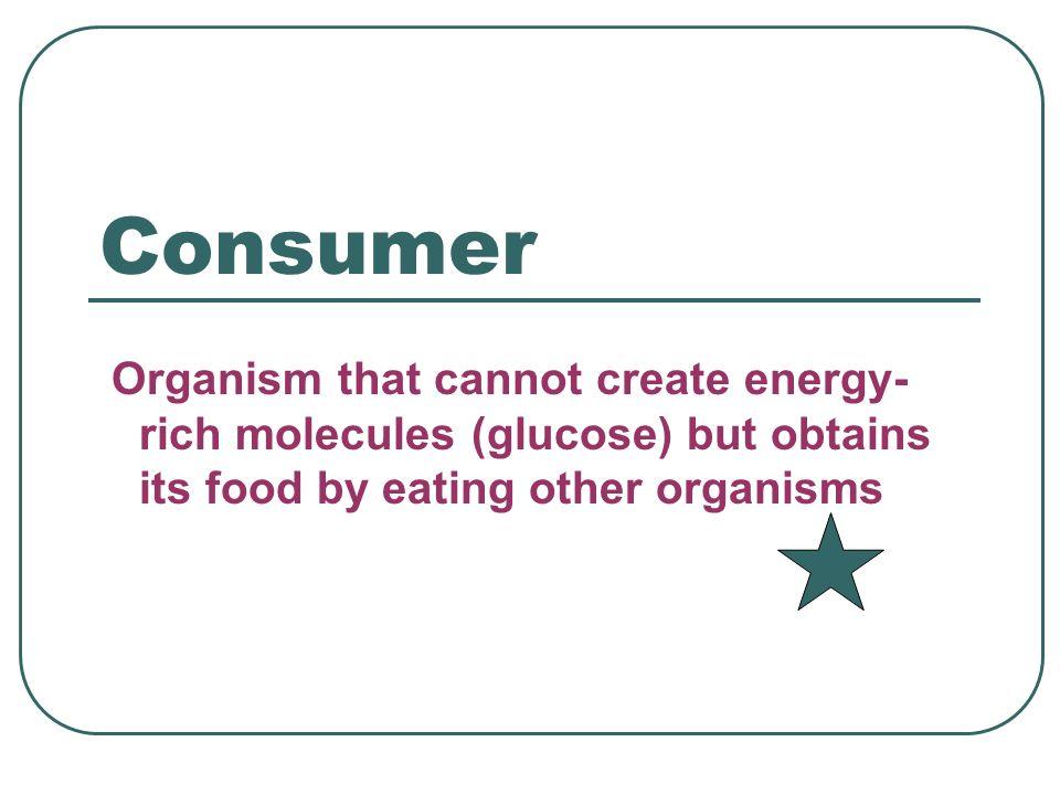 Consumer Organism that cannot create energy-rich molecules (glucose) but obtains its food by eating other organisms.