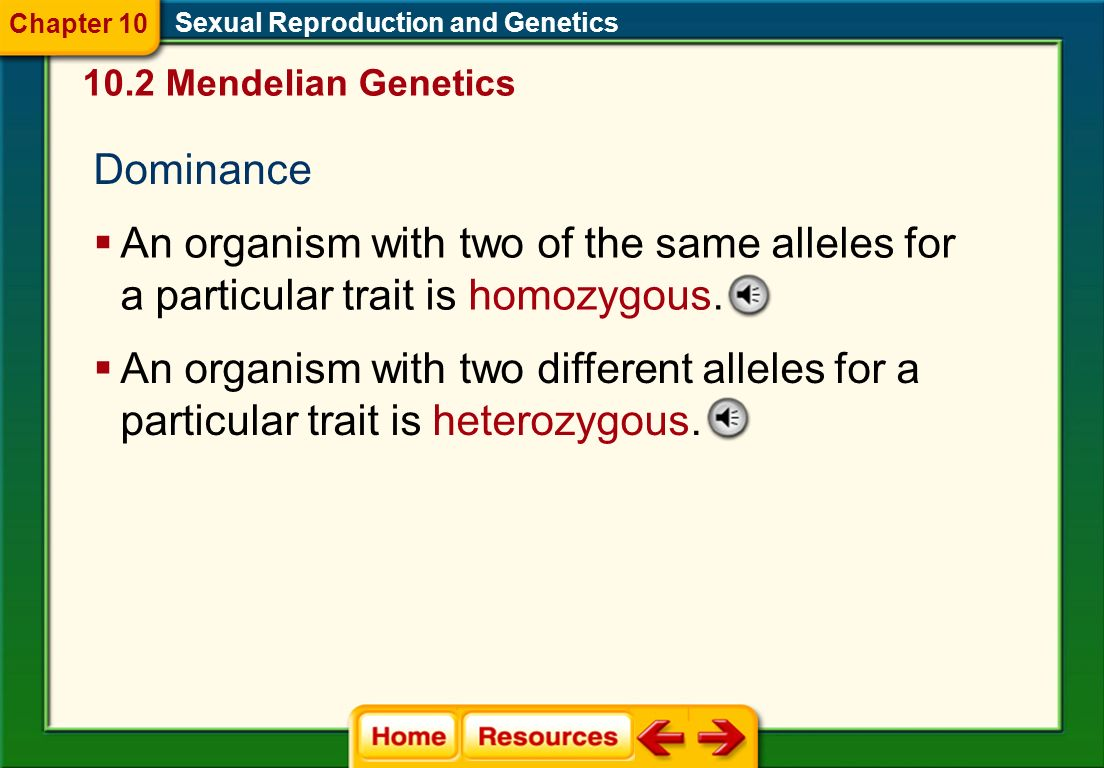 Chapter 10 Sexual Reproduction and Genetics Mendelian Genetics. Dominance.