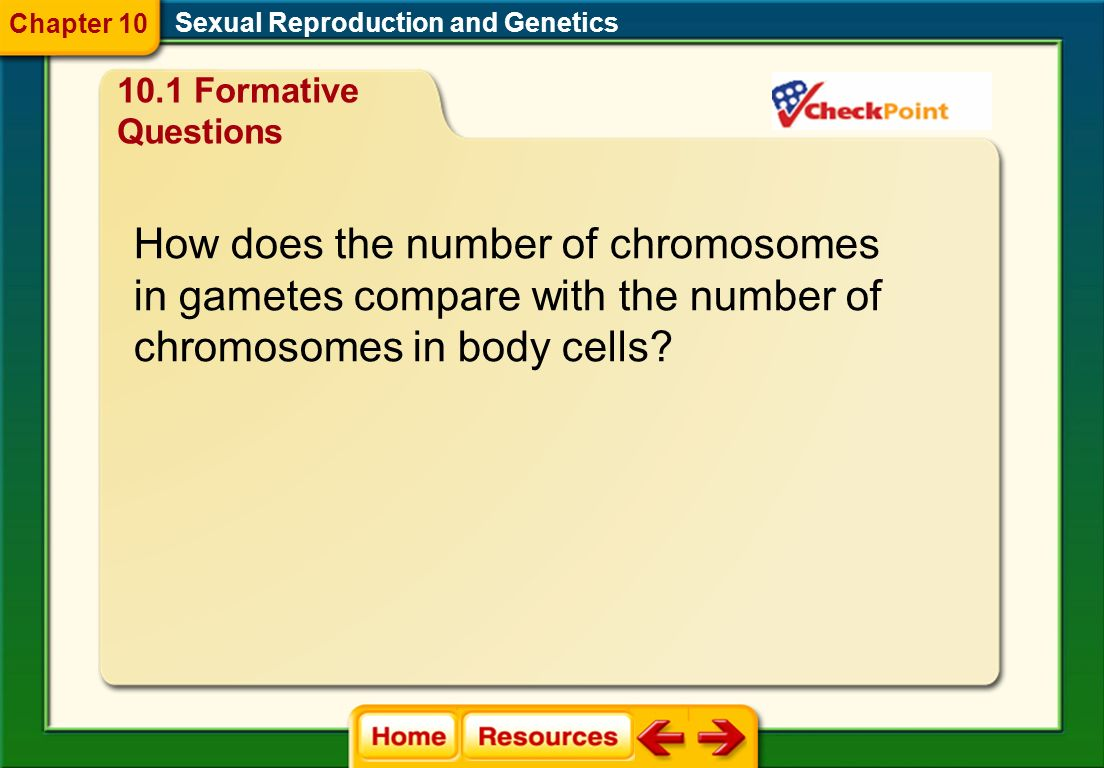 How does the number of chromosomes