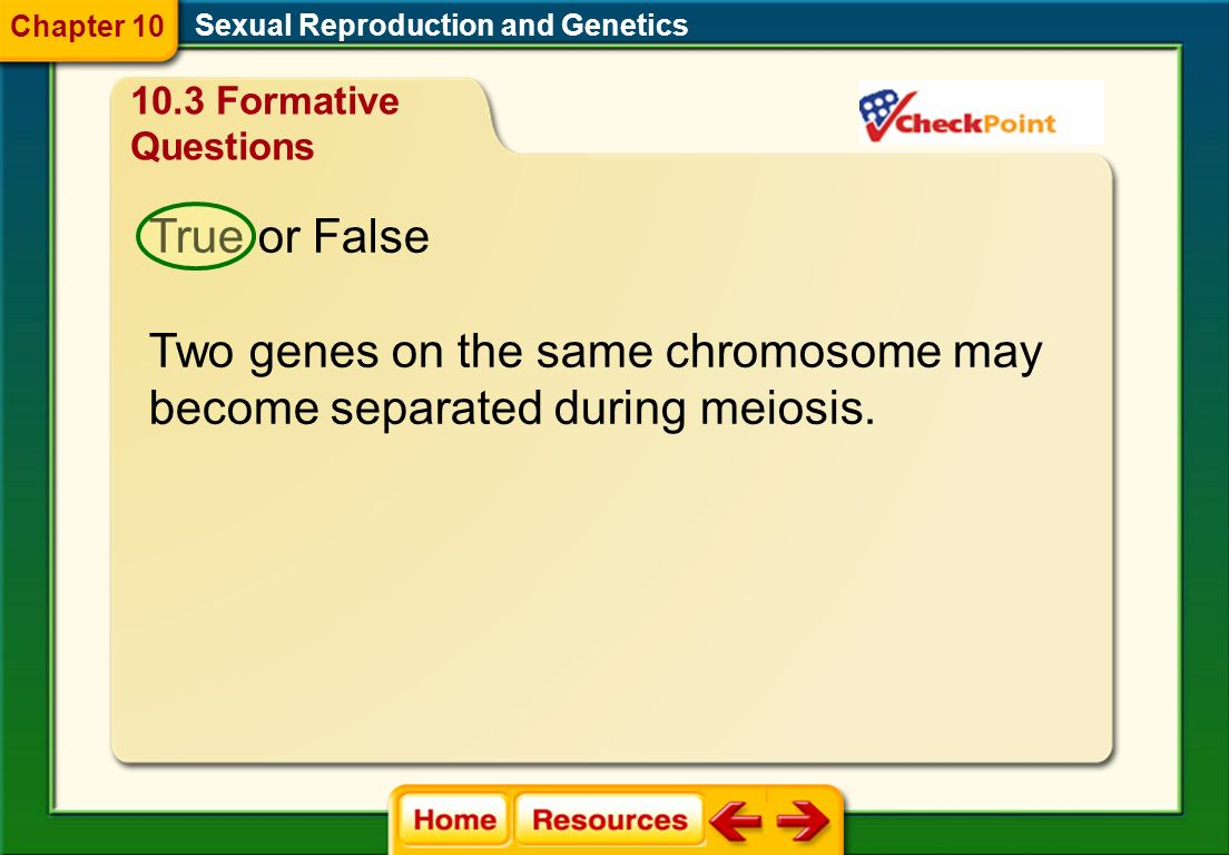 Two genes on the same chromosome may become separated during meiosis.