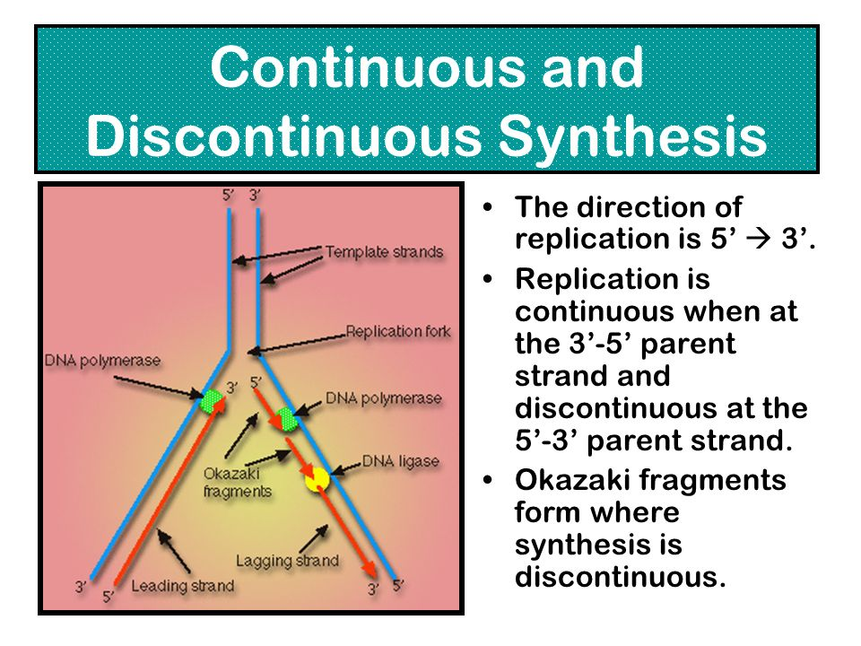 Continuous and Discontinuous Synthesis